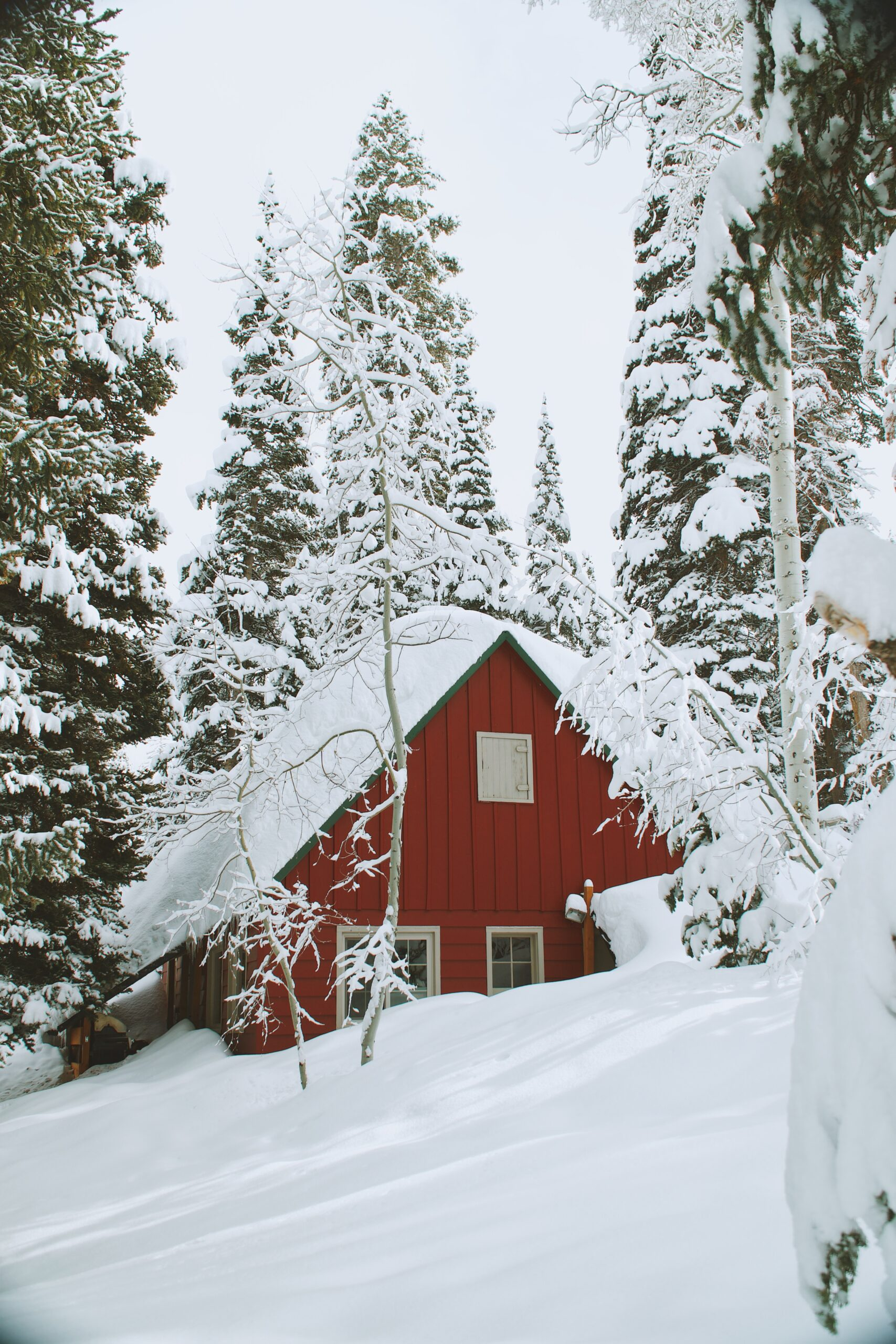 A Snow Covered Cabin With Trees In The Back